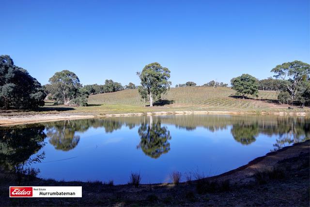 182 John Jobbins Road, NSW 2581