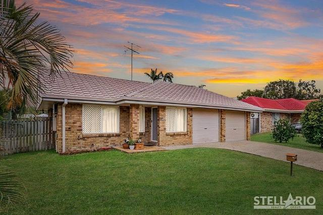 49 Stackpole Street, QLD 4122