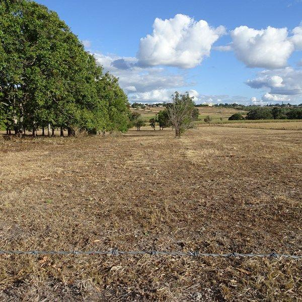 Lot 10/null Green Valley Court, QLD 4660
