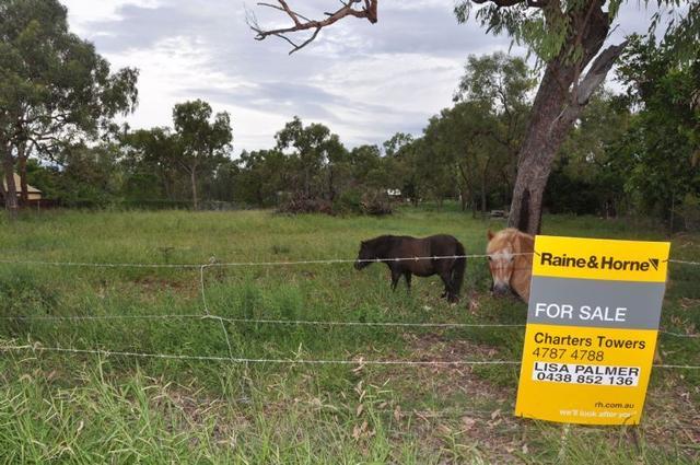 126 Old Dalrymple Road, QLD 4820