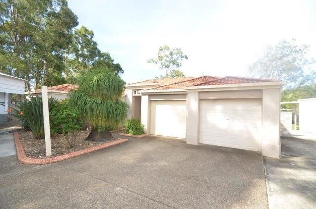 79 Daintree Drive, QLD 4214