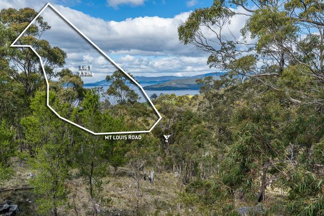97 Mount Louis Road, TAS 7054