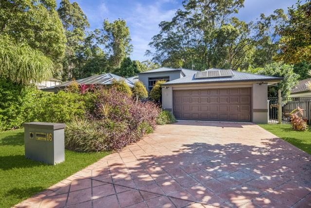 16 Breynia Court, QLD 4221