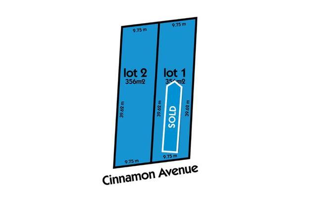 2/46 Cinnamon Avenue, SA 5097