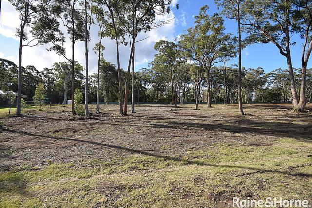 11 Hickory Crescent, NSW 2541
