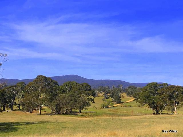 670 Monga Lane, NSW 2622