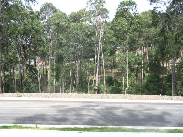 15 Bellbird Drive, NSW 2536
