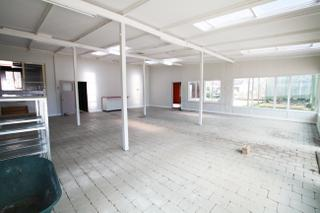 Main Commercial Space