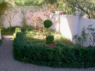 Garden/Courtyard