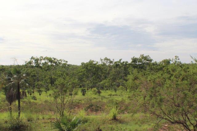 1070 Rum Jungle Road, NT 0822