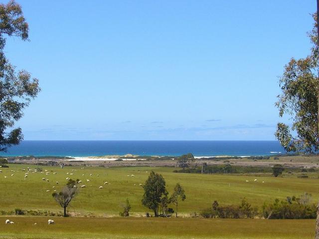 19595 Tasman Highway, TAS 7215