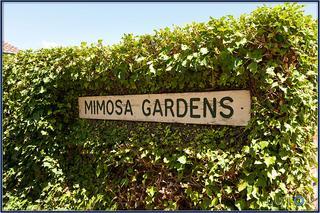 Mimosa Gardens