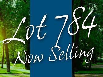 Lot 784 Montana Street, WA 6171
