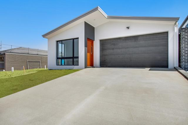 16 Melomys Street, ACT 2914