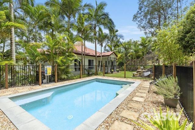 21 Waratah Court, QLD 4213