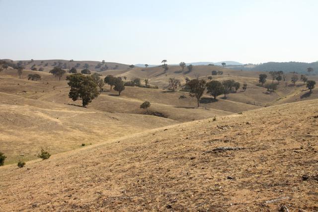 Waratah, NSW 2582