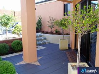Paved outdoor area