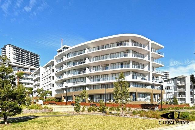 313B/3 Timbrol Ave, NSW 2138