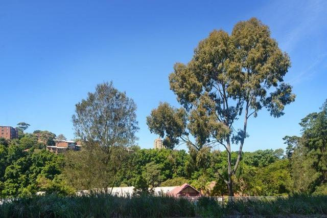 101/22 Doris Street, NSW 2060