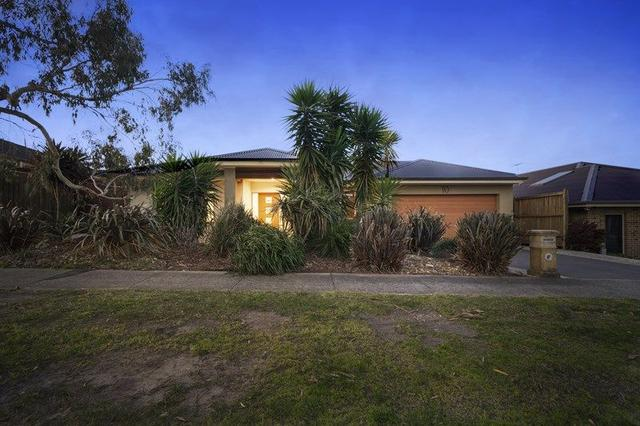 10 Triandra Court, VIC 3977