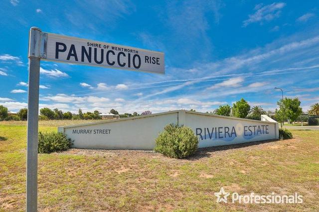 11 Panuccio Rise, NSW 2738
