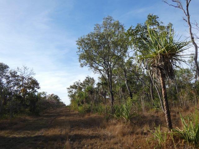 75 Milne Road, NT 0822