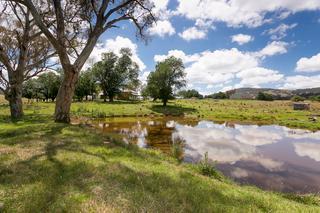 Cottage dam
