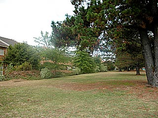 Front - grounds