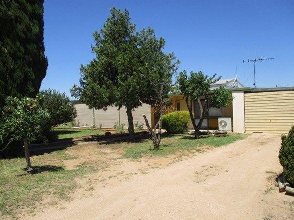210 Namoi Street, SA 5341