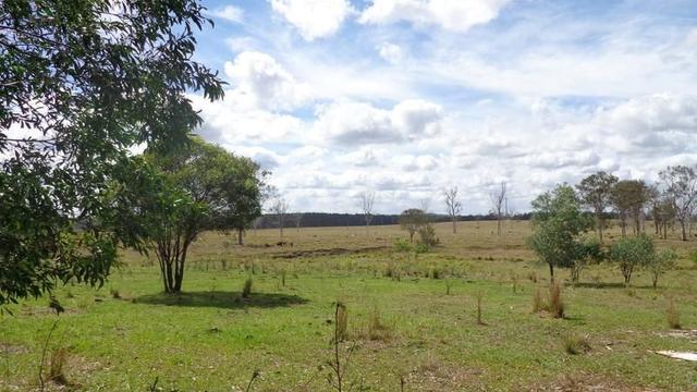 Lot 13 Mayne Streeet, QLD 4650