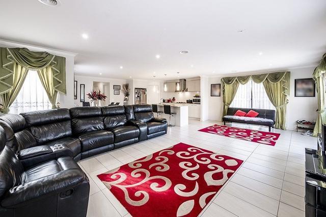15 Brolin Terrace, VIC 3977