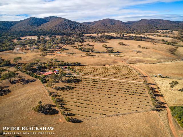 103 Mt Colinton Road, NSW 2626