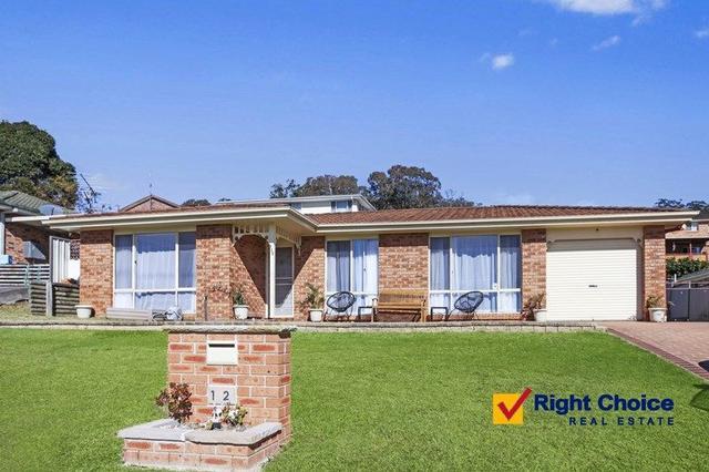 112 Hillside  Drive, NSW 2527