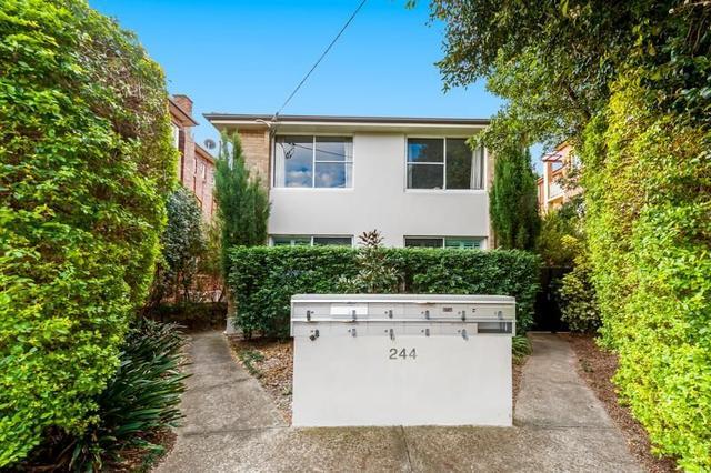 8/244 Maroubra Road, NSW 2035