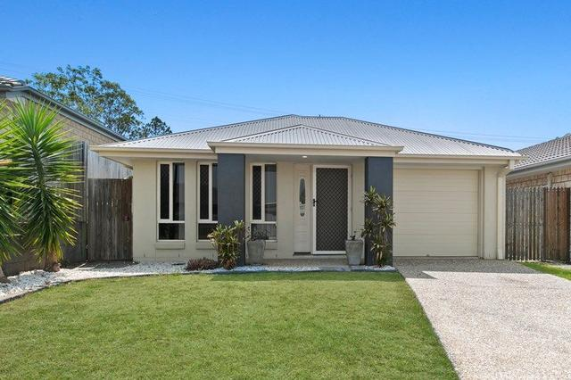 17 Bellthorpe Circuit, QLD 4503