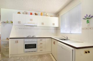 Real Estate Wollongong - kitchen