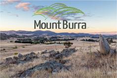 Mount Burra - Mount Burra, NSW 2620