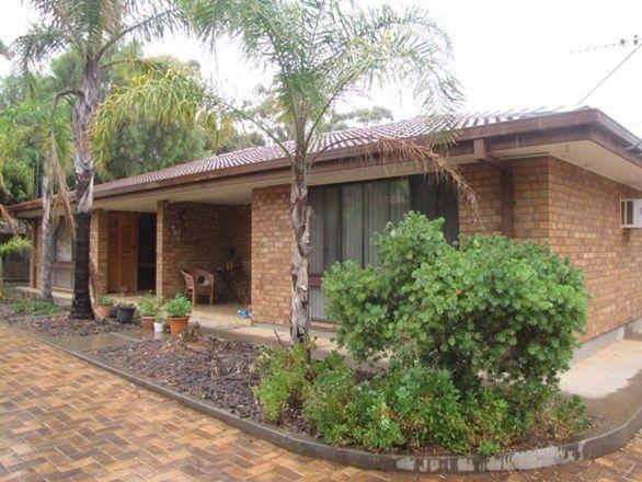 13 Pascoe Terrace, SA 5345