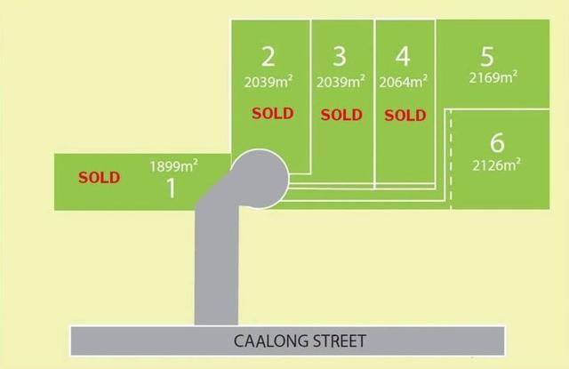 Lot 5/52-54 Caalong Street, NSW 2577