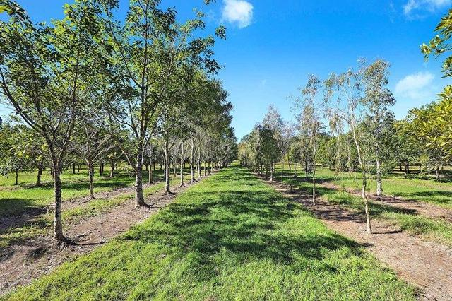 190 McGilchrist Road, QLD 4555