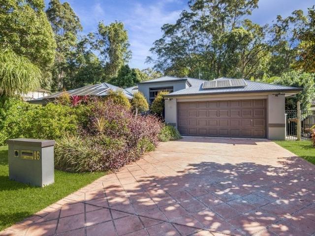 16 Breynia Court, QLD 4221