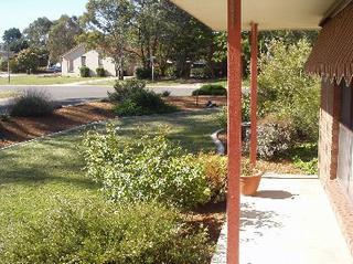 Frontyard