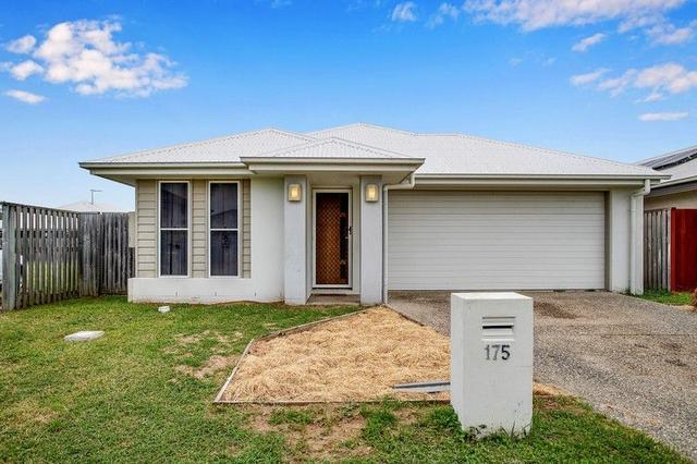 175 Whitehaven Drive, QLD 4740
