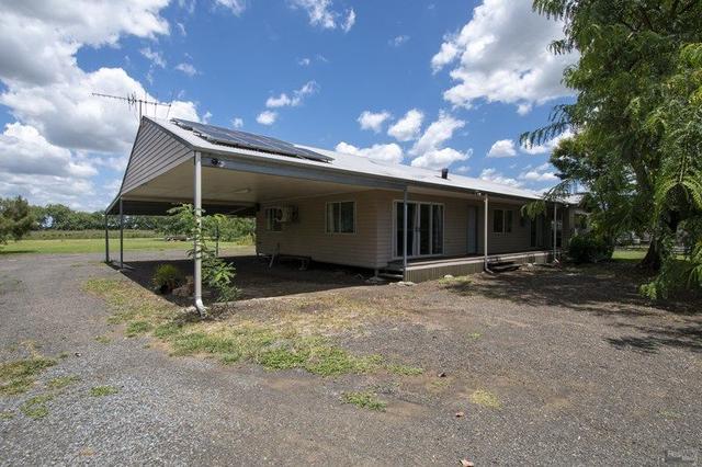 45 Adelong Avenue, QLD 4306