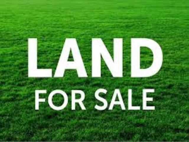 Lot 1/42 Gardenia Drive, QLD 4159