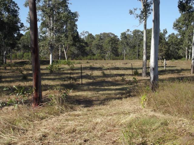 106 Hatchery Road, QLD 4660