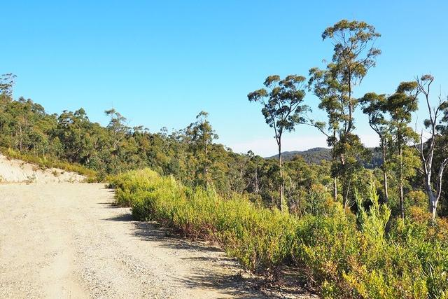 30 Forest Heights Drive, TAS 7310