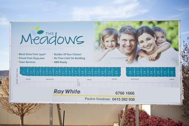 The Meadows Estate, Grand Meadows Drive, NSW 2340