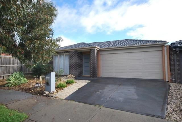 6 Red Poll Road, VIC 3977