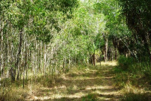 Weaver Road, NT 0837